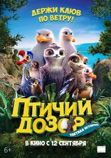 Птичий дозор плакаты