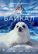 Байкал. Удивительные приключения Юмы плакаты