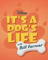сериал Это собачья жизнь