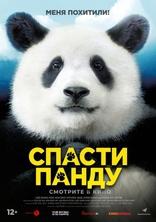 фильм Спасти панду
