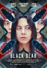 фильм Чёрный медведь
