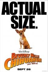 Крошка из Беверли Хиллз плакаты