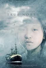 Нереальный север плакаты