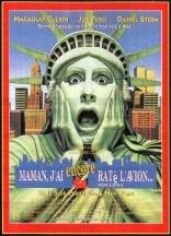 Один дома 2: Потерявшийся в Нью-Йорке плакаты