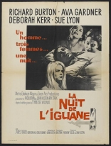 Ночь игуаны плакаты