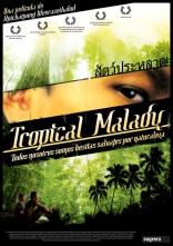 Тропическая лихорадка плакаты