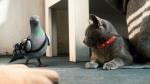кадр №45616 из фильма Кошки против собак: Месть Китти Галор