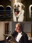 кадр №45626 из фильма Кошки против собак: Месть Китти Галор