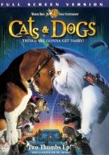 Кошки против собак плакаты
