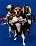кадр №46841 из фильма Кошки против собак