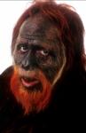 кадр №52094 из фильма Планета обезьян