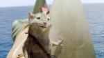 кадр №60442 из фильма Хроники Нарнии: Покоритель зари