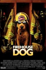 Пожарный пес плакаты