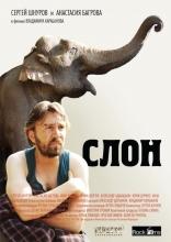 Слон плакаты