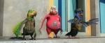 кадр №70510 из фильма Кукарача 3D