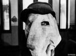 кадр №71278 из фильма Человек-слон