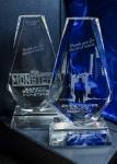 Вручение премии «Жорж» за 2010 год кадры