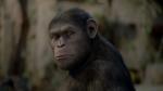Восстание планеты обезьян кадры