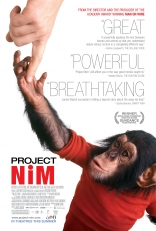 Проект «Ним»* плакаты