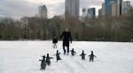 кадр №79566 из фильма Пингвины мистера Поппера