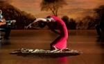 Фламенко, фламенко кадры