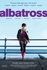 Альбатрос* плакаты