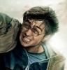 Potter m.d