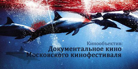 Документальное кино Московского кинофестиваля