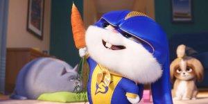 Рецензия на анимационный фильм «Тайная жизнь домашних животных 2»